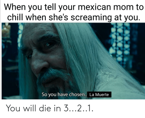 Muerte: When you tell your mexican mom to  chill when she's screaming at you.  So you have chosen.. La Muerte You will die in 3...2..1.
