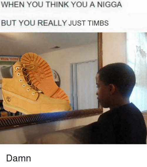 Dank Memes, You-Think-You, and Timb: WHEN YOU THINK YOU A NIGGA  BUT YOU REALLY JUST TIMBS Damn