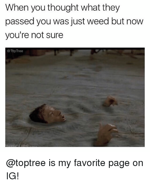 Weed, Marijuana, and Thought: When you thought what they  passed you was just weed but now  you're not sure  TopTree @toptree is my favorite page on IG!