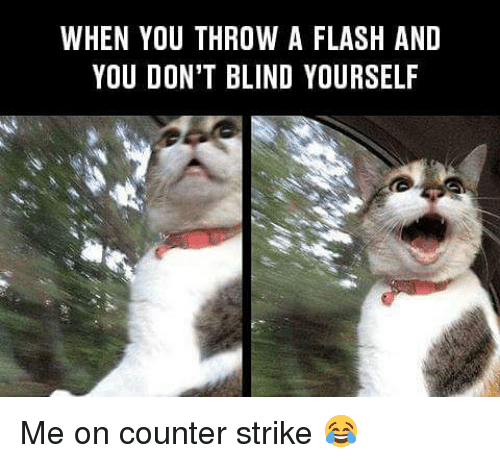 Counter Strikes: WHEN YOU THROW A FLASH AND  YOU DON'T BLIND YOURSELF Me on counter strike 😂
