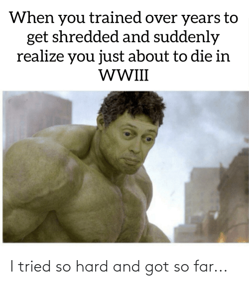 i tried so hard and got so far: When you trained over years to  get shredded and suddenly  realize you just about to die in  WWI I tried so hard and got so far...