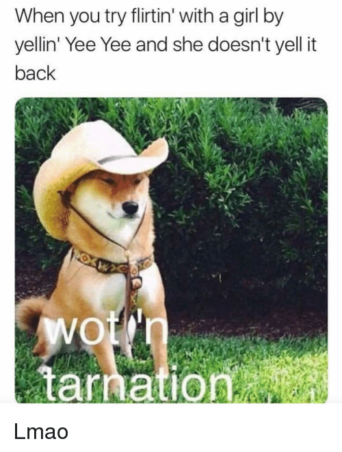 Funny, Lmao, and Yee: When you try flirtin' with a girl by  yellin' Yee Yee and she doesn't yell it  back  tarnation Lmao