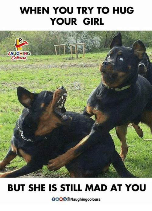 Still Mad At You: WHEN YOU TRY TO HUG  YOUR GIRL  LAUGHING  BUT SHE IS STILL MAD AT YOU  /laughingcolours