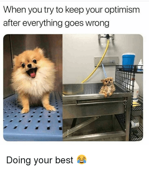 Memes, Best, and Optimism: When you try to keep your optimism  after everything goes wrong Doing your best 😂
