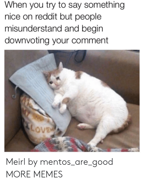 Dank, Love, and Memes: When you try to say something  nice on reddit but people  misunderstand and begin  downvoting your comment  LOVE Meirl by mentos_are_good MORE MEMES