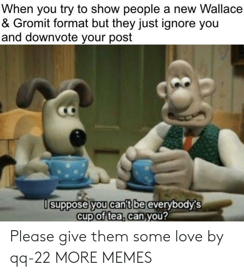 Wallace: When you try to show people a new Wallace  & Gromit format but they just ignore you  and downvote your post  suppose you cant be  everybodys  cup of tea, can you?  2 Please give them some love by qq-22 MORE MEMES