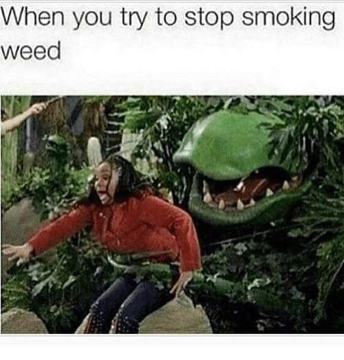 weeds: When you try to stop smoking  weed
