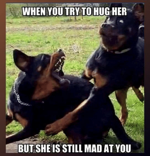 Still Mad At You: WHEN YOU TRY TOHUG HER  BUT SHEIS STILL MAD AT YOU