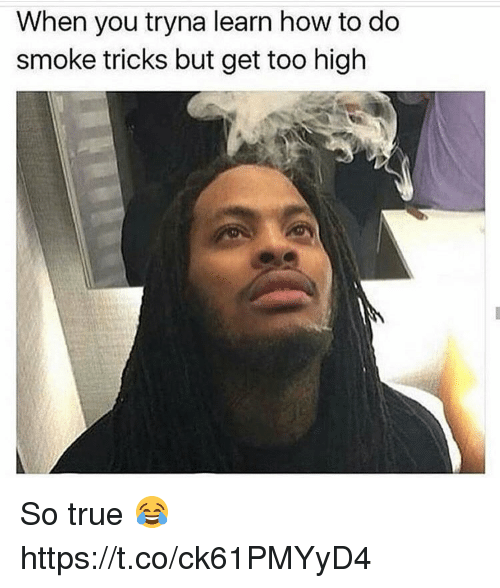 Memes, True, and How To: When you tryna learn how to do  smoke tricks but get too high So true 😂 https://t.co/ck61PMYyD4