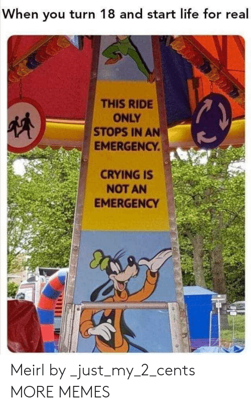 my 2: When you turn 18 and start life for real  THIS RIDE  ONLY  STOPS IN AN  EMERGENCY.  CRYING IS  NOT AN  EMERGENCY Meirl by _just_my_2_cents MORE MEMES