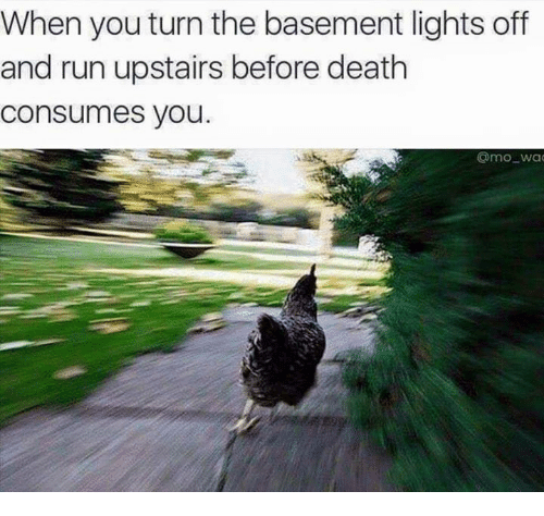 Dank Memes: When you turn the basement lights off  and run upstairs before death  Consumes you.  @mo wa