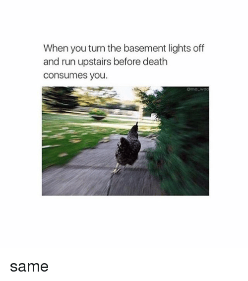When You Turn the Basement Lights f and Run Upstairs Before