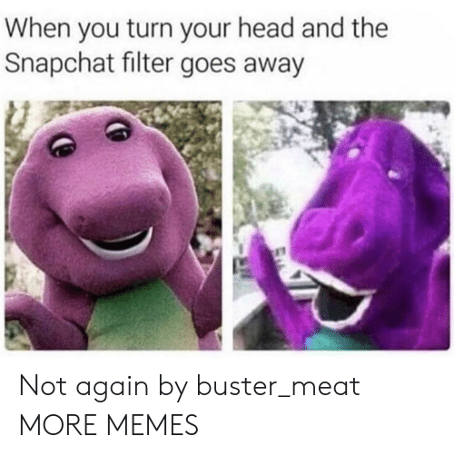 Snapchat Filter: When you turn your head and the  Snapchat filter goes away Not again by buster_meat MORE MEMES