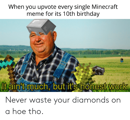 a hoe: When you upvote every single Minecraft  meme for its 10th birthday  Itainnuch, but it's honest work  0 Never waste your diamonds on a hoe tho.
