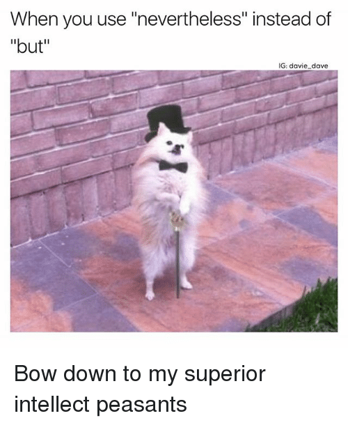"""bowing: When you use """"nevertheless"""" instead of  """"but""""  IG: davie dave Bow down to my superior intellect peasants"""
