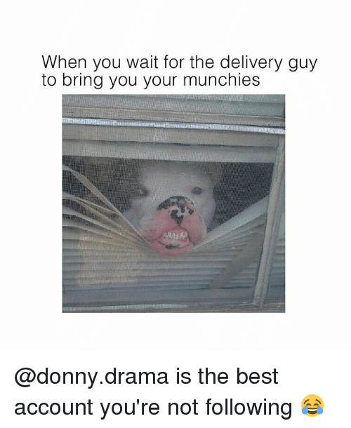 Memes, Munchies, and Best: When you wait for the delivery guy  to bring you your munchies @donny.drama is the best account you're not following 😂