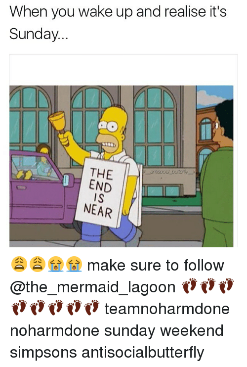 the end is near: When you wake up and realise it's  Sunday.  THE  END  IS  NEAR 😩😩😭😭 make sure to follow @the_mermaid_lagoon 👣👣👣👣👣👣👣👣 teamnoharmdone noharmdone sunday weekend simpsons antisocialbutterfly