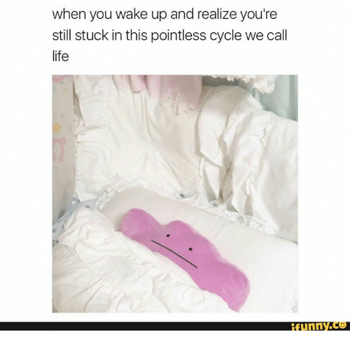 Life Funny: when you wake up and realize you're  still stuck in this pointless cycle we call  life  funnY.Ce