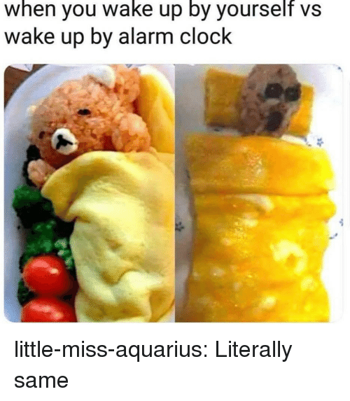 little miss: when you wake up by yourself vs  wake up by alarm clock little-miss-aquarius:  Literally same