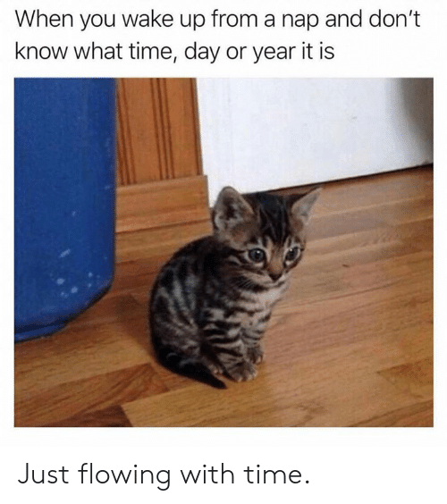When You Wake Up From A Nap: When you wake up from a nap and don't  know what time, day or year it is Just flowing with time.