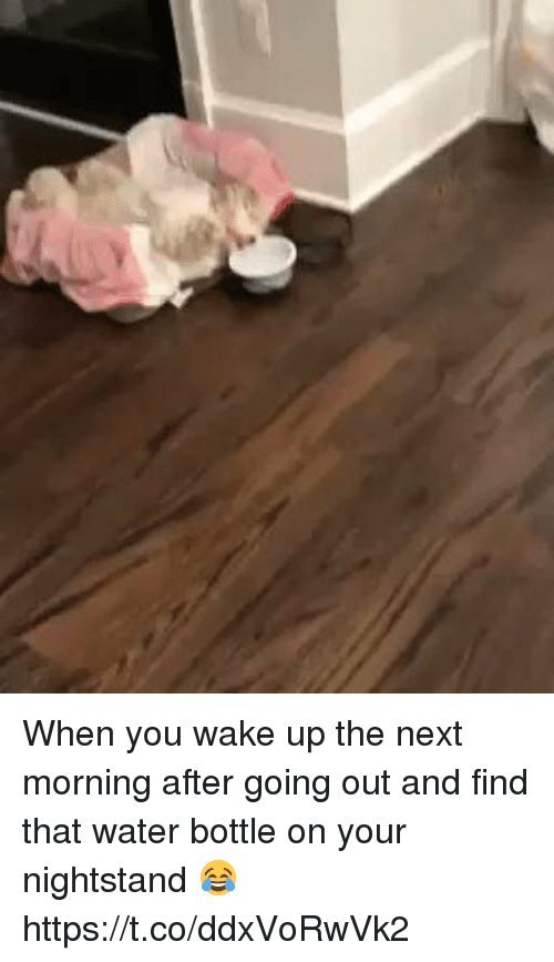 Water, Girl Memes, and Next: When you wake up the next morning after going out and find that water bottle on your nightstand 😂 https://t.co/ddxVoRwVk2