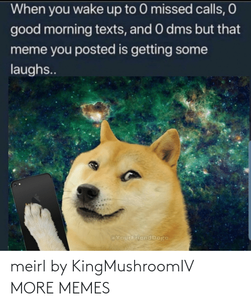 Missed Calls: When you wake up to 0 missed calls, O  good morning texts, and 0 dms but that  meme you posted is getting some  laughs..  @YourFriend Doge meirl by KingMushroomIV MORE MEMES