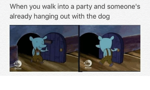Party, Dog, and You: When you walk into a party and someone's  already hanging out with the dog