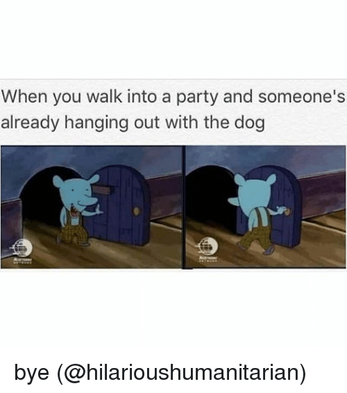 Memes, Party, and 🤖: When you walk into a party and someone's  already hanging out with the dog bye (@hilarioushumanitarian)