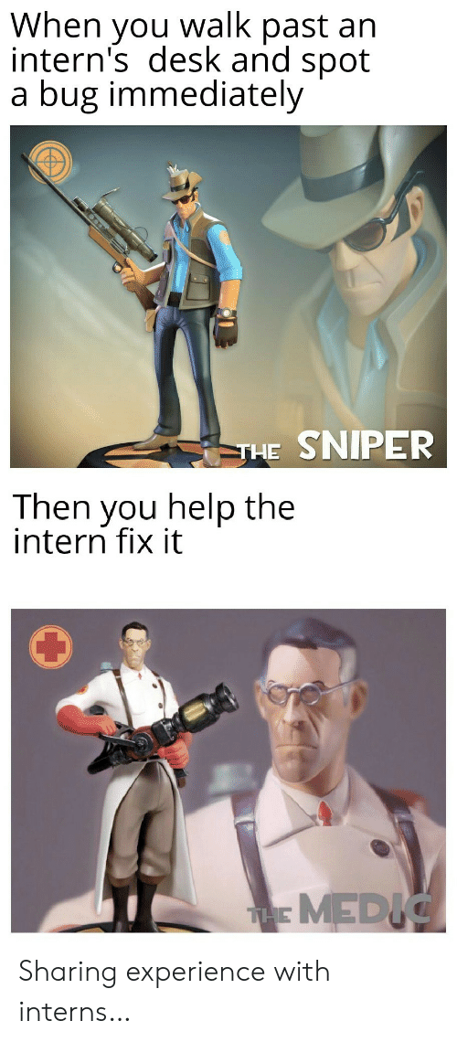 Fix It: When you walk past an  intern's desk and spot  a bug immediately  THE SNIPER  Then you help the  intern fix it  THMEDIC Sharing experience with interns…