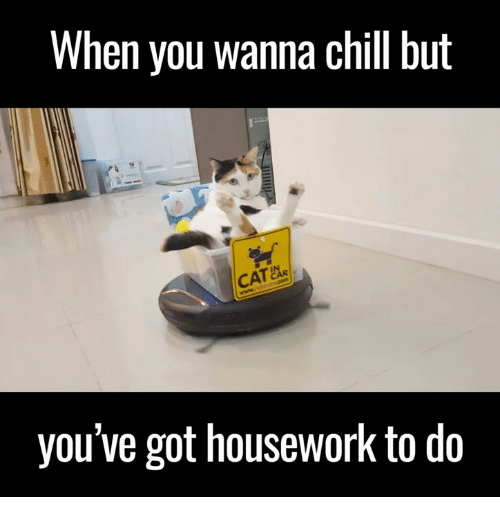 Housework: When you wanna Chil but  CAR  you've got housework to do