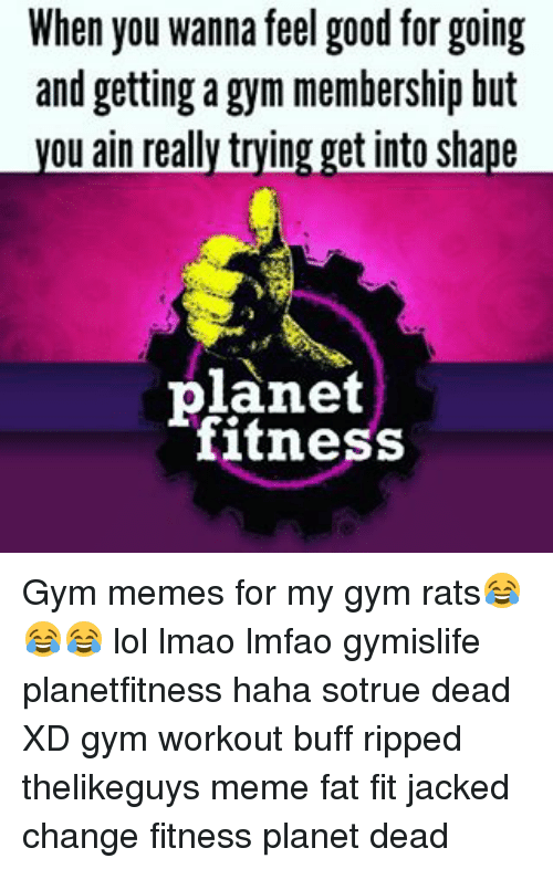 Meme Fat: When you wanna feel good for going  and getting a gym membership but  ou ain really trying get into shape  planet  fitness Gym memes for my gym rats😂😂😂 lol lmao lmfao gymislife planetfitness haha sotrue dead XD gym workout buff ripped thelikeguys meme fat fit jacked change fitness planet dead