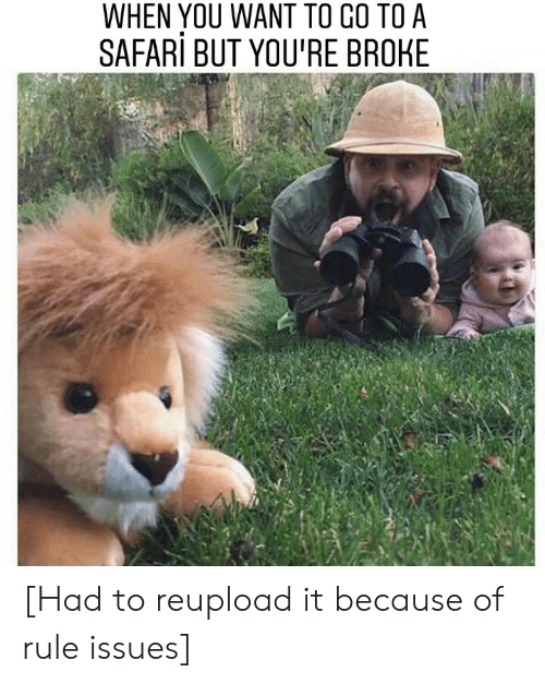 Safari: WHEN YOU WANT TO CO TO A  SAFARi BUT YOU'RE BROHE [Had to reupload it because of rule issues]