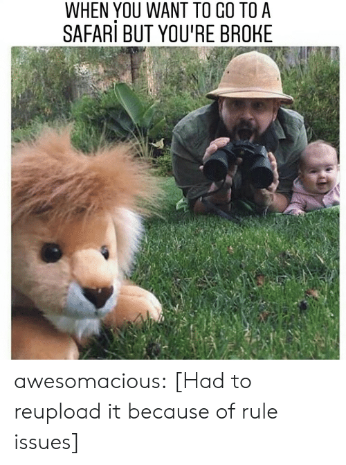 Safari: WHEN YOU WANT TO CO TO A  SAFARi BUT YOU'RE BROHE awesomacious:  [Had to reupload it because of rule issues]