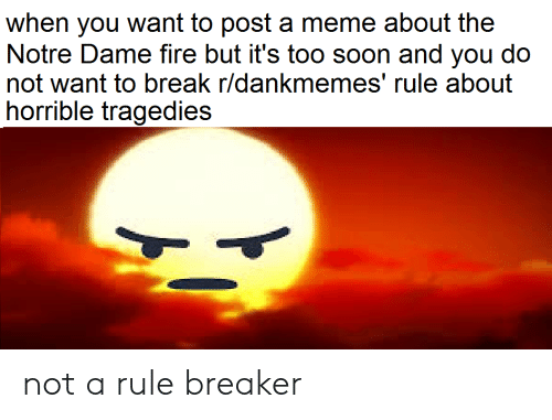 Rule Breaker: when you want to post a meme about the  Notre Dame fire but it's too soon and you do  not want to break r/dankmemes' rule about  horrible tragedies not a rule breaker