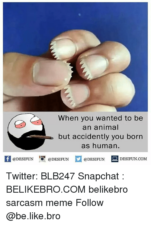 Be Like, Meme, and Memes: When you wanted to be  an animal  but accidently you born  as human.  K @DESIFUN 1 @DESIFUN  @DESIFUN  DESIFUN.COM Twitter: BLB247 Snapchat : BELIKEBRO.COM belikebro sarcasm meme Follow @be.like.bro