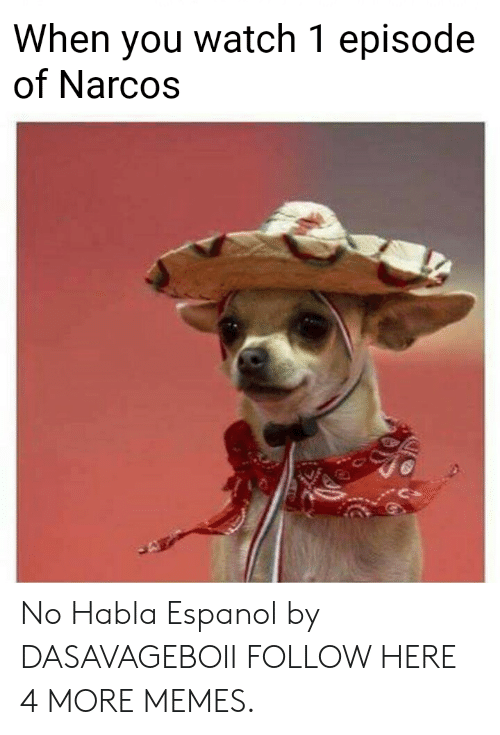 Narcos: When you watch 1 episode  of Narcos No Habla Espanol by DASAVAGEBOII FOLLOW HERE 4 MORE MEMES.