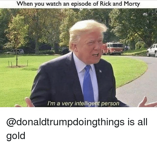 Rick and Morty, Watch, and Dank Memes: When you watch an episode of Rick and Morty  I'm a very intelligent person @donaldtrumpdoingthings is all gold