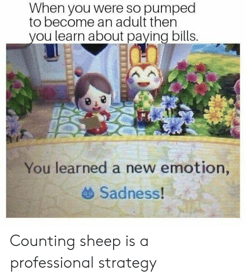 Paying Bills: When you were so pumped  to become an adult then  ou learn about paying bills.  You learned a new emotion,  Sadness! : Counting sheep is a professional strategy