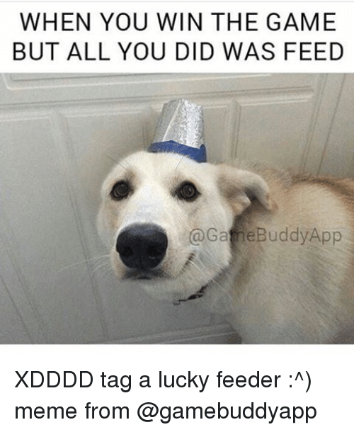Xdddd: WHEN YOU WIN THE GAME  BUT ALL YOU DID WAS FEED  @Gane Buddy App XDDDD tag a lucky feeder :^) meme from @gamebuddyapp