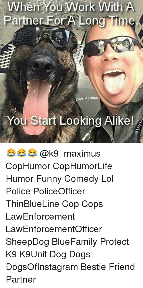 Maximus: When You Work With A  Partner For A Long Mme  K9 Maximus  You Start Looking Alike! 😂😂😂 @k9_maximus CopHumor CopHumorLife Humor Funny Comedy Lol Police PoliceOfficer ThinBlueLine Cop Cops LawEnforcement LawEnforcementOfficer SheepDog BlueFamily Protect K9 K9Unit Dog Dogs DogsOfInstagram Bestie Friend Partner