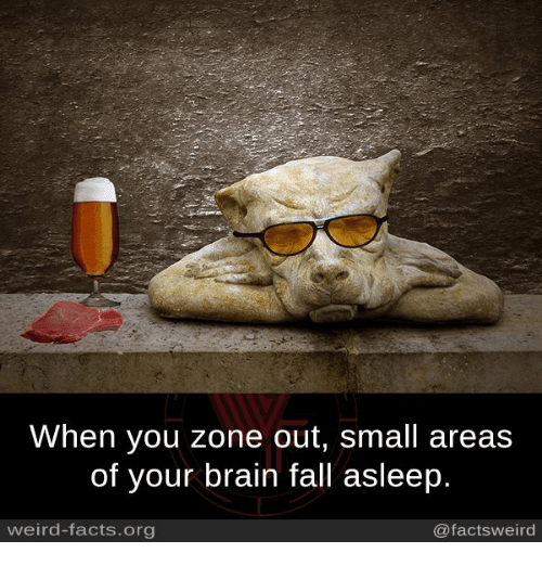 Facts, Fall, and Memes: When you zone out, small areas  of your brain fall asleep.  weird-facts.org  @factsweird
