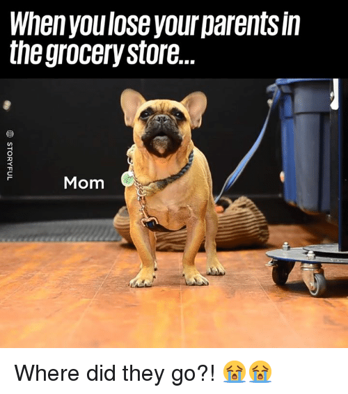 Dank, Parents, and Mom: When youlose your parents in  the grocerystore  Mom Where did they go?! 😭😭
