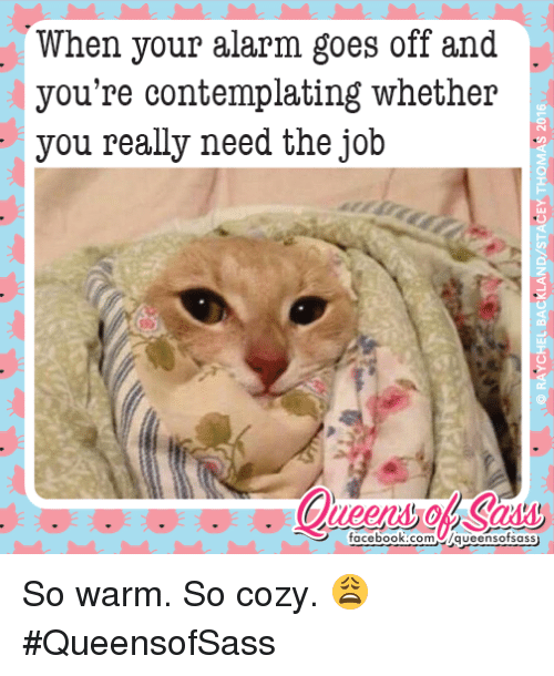 Facebook, Memes, and Alarm: When your alarm goes off and  you're contemplating whether  you really need the job  facebook.com  Aqueensosass So warm. So cozy. 😩 #QueensofSass
