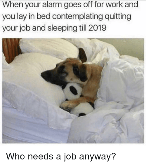 Quitting: When your alarm goes off for work and  you lay in bed contemplating quitting  your job and sleeping till 2019 Who needs a job anyway?