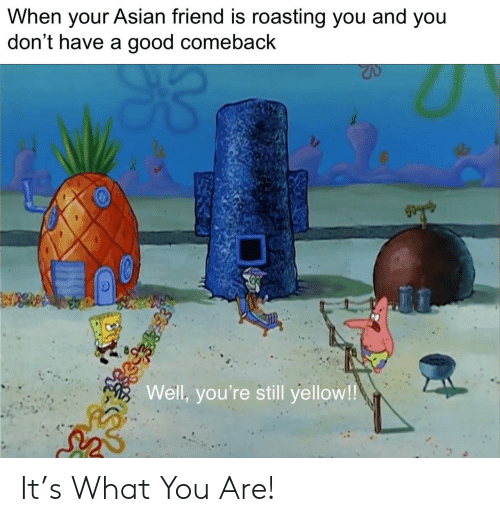 Good Comeback: When your Asian friend is roasting you and you  don't have a good comeback  Well, you're still yellow! It's What You Are!