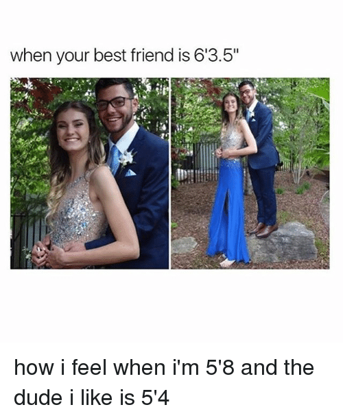 "Best Friend, Dude, and Memes: when your best friend is 613.5"" how i feel when i'm 5'8 and the dude i like is 5'4"