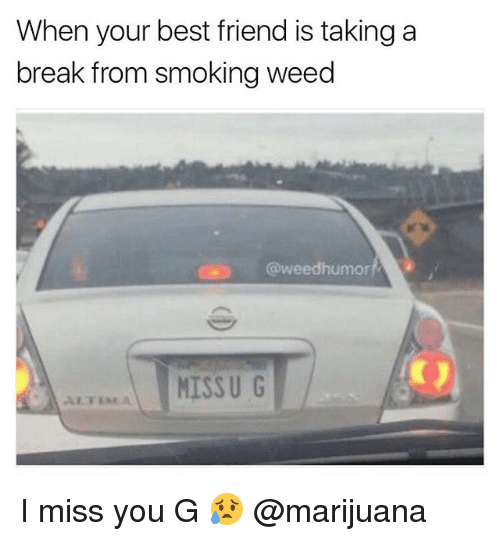 bests: When your best friend is taking a  break from smoking weed  @weedhumor  MISSU G I miss you G 😥 @marijuana