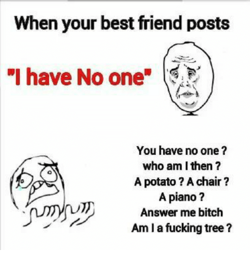 """Best Friend, Bitch, and Fucking: When your best friend posts  """"I have No one  You have no one?  who am I then?  A potato? A chair?  A piano?  Answer me bitch  Amla fucking tree?"""