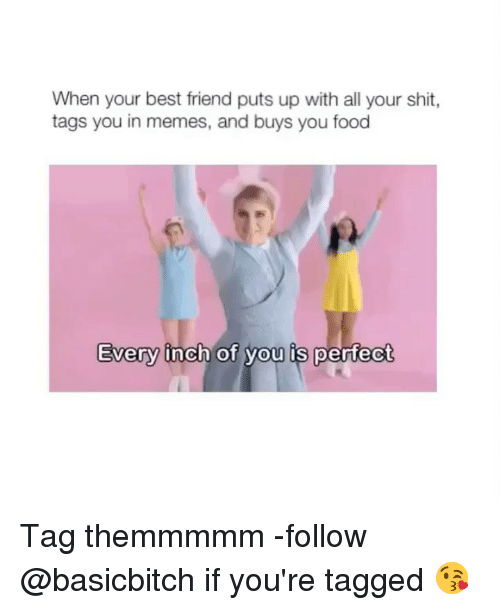 Best Friend, Food, and Memes: When your best friend puts up with all your shit,  tags you in memes, and buys you food  Every inch of vou is pertect  0  0 Tag themmmmm -follow @basicbitch if you're tagged 😘