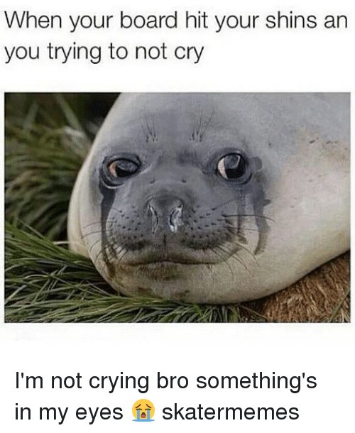 shins: When your board hit your shins an  you trying to not cry I'm not crying bro something's in my eyes 😭 skatermemes